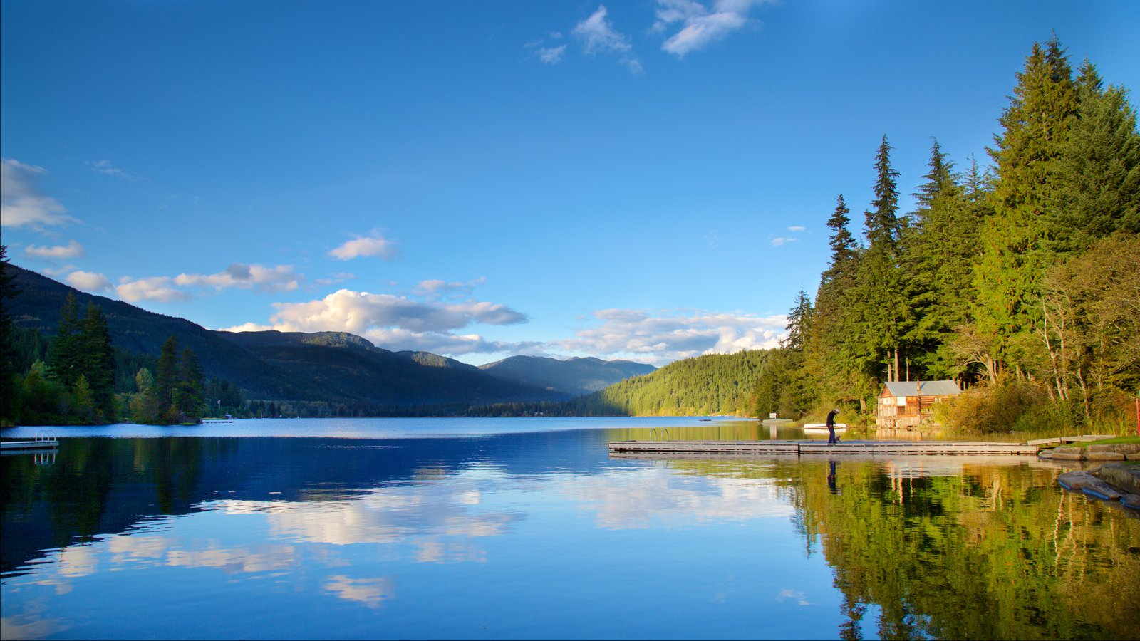 Whistler Ski Area which includes a lake or waterhole, landscape views and forests