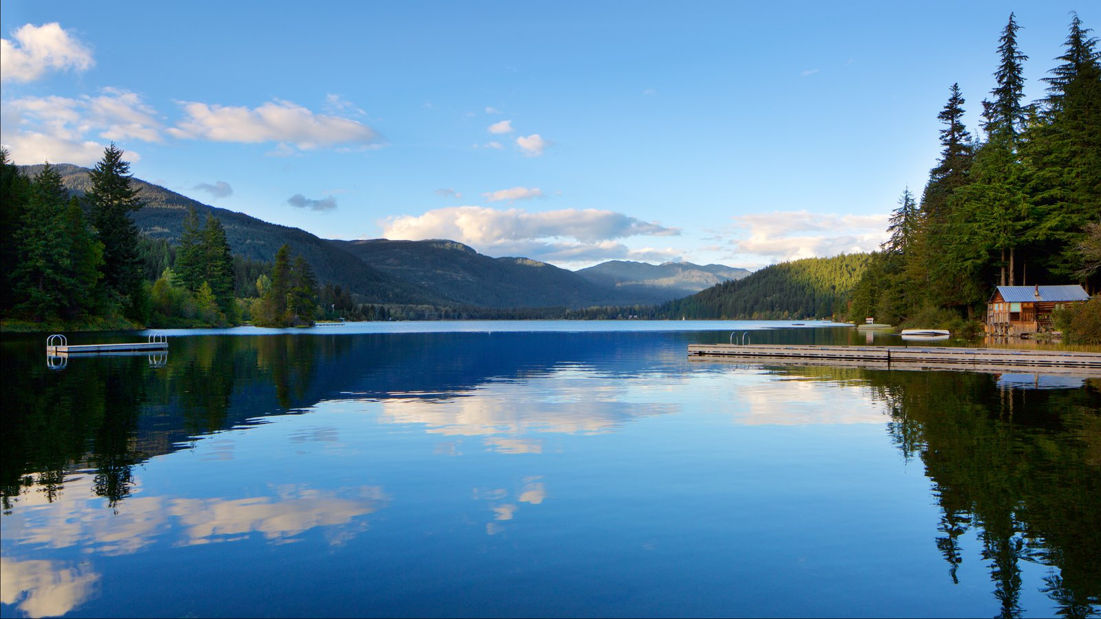 Whistler Ski Area showing a lake or waterhole and forest scenes