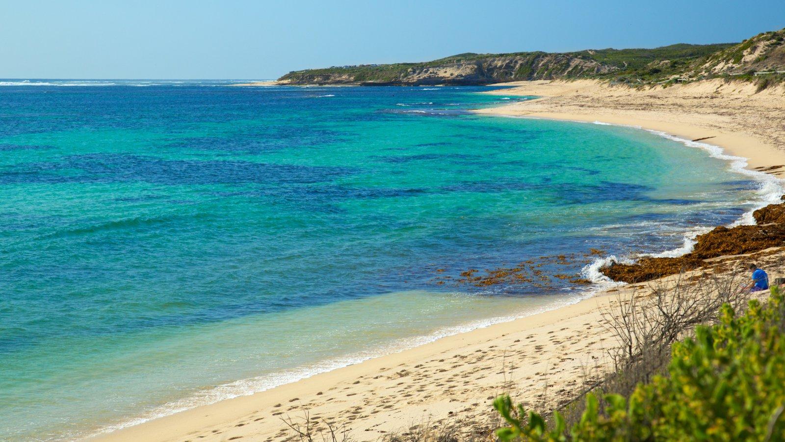 Playa de Prevelly ofreciendo vistas generales de la costa, una bahía o puerto y una playa de arena