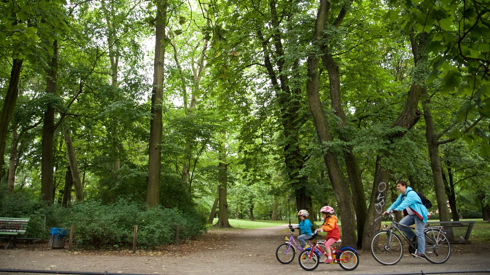 Weissensee showing cycling and a garden as well as a family