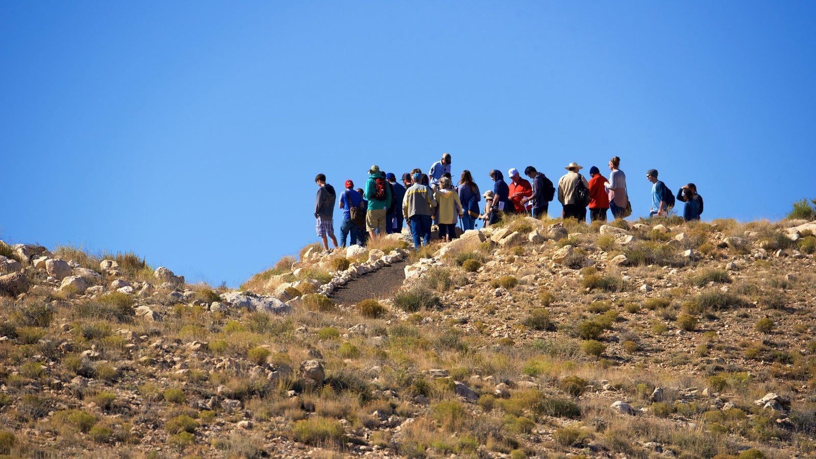 Meteor Crater mostrando cenas tranquilas e paisagens do deserto assim como um pequeno grupo de pessoas