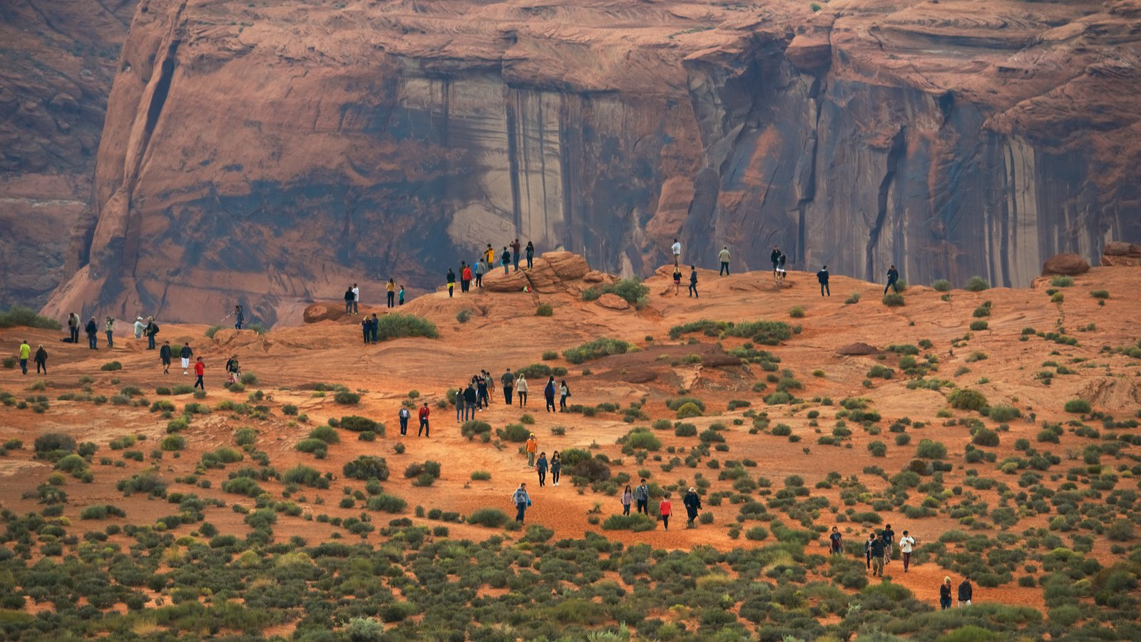 Horseshoe Bend mostrando cenas tranquilas, paisagens do deserto e um desfiladeiro ou canyon