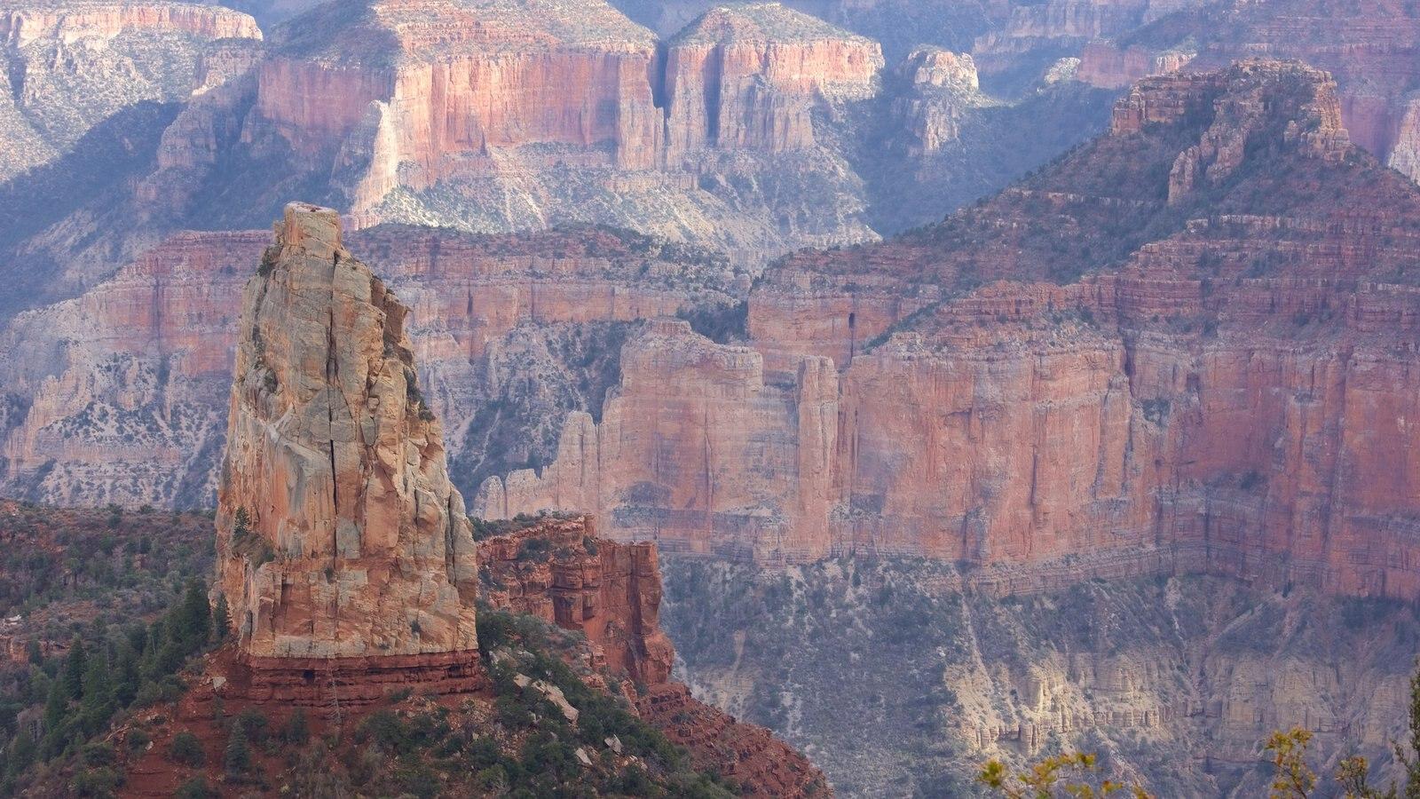 North Rim que inclui cenas tranquilas, paisagens do deserto e um desfiladeiro ou canyon
