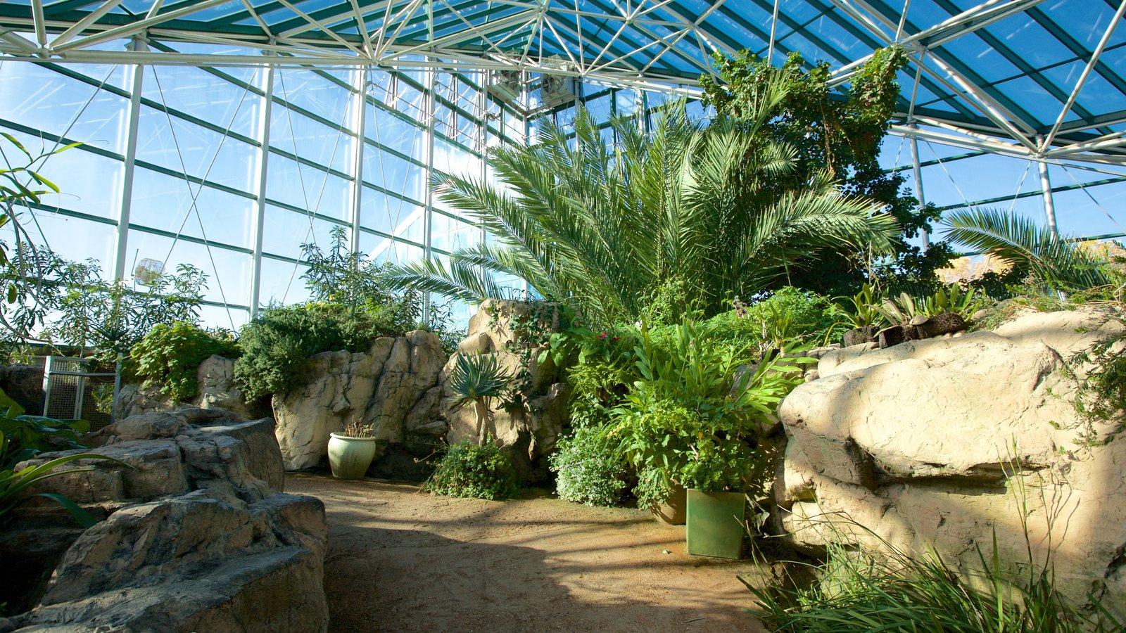 rio grande botanical garden pictures: view photos & images of rio
