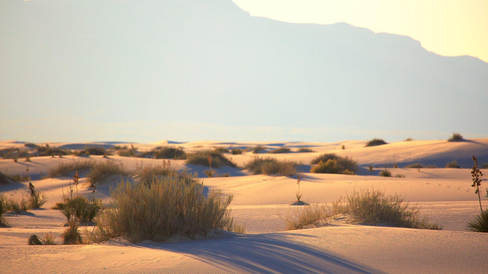 Monumento Nacional Arenas Blancas que incluye vistas al desierto