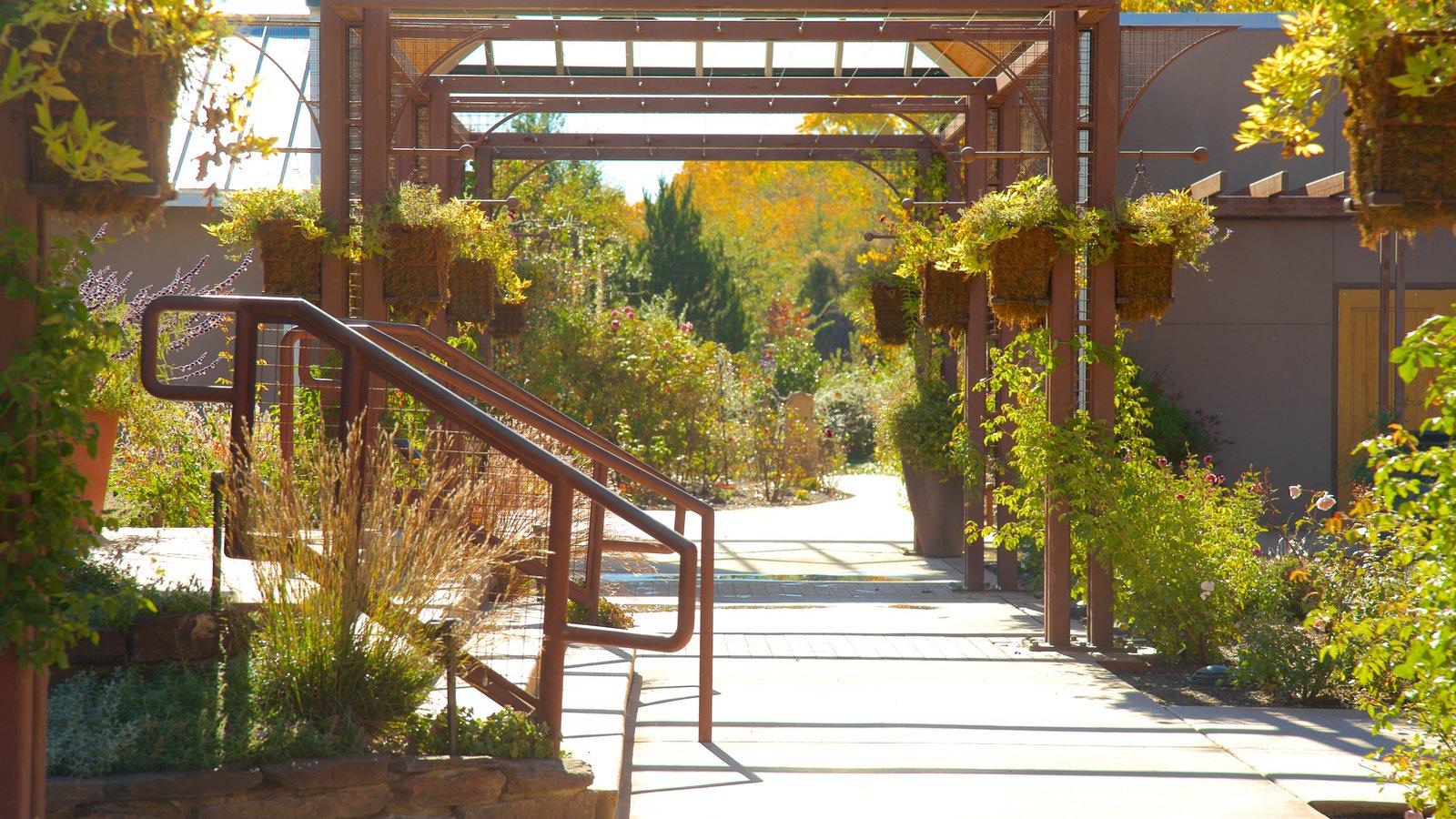 Rio Grande Botanical Garden Pictures View Photos Amp Images