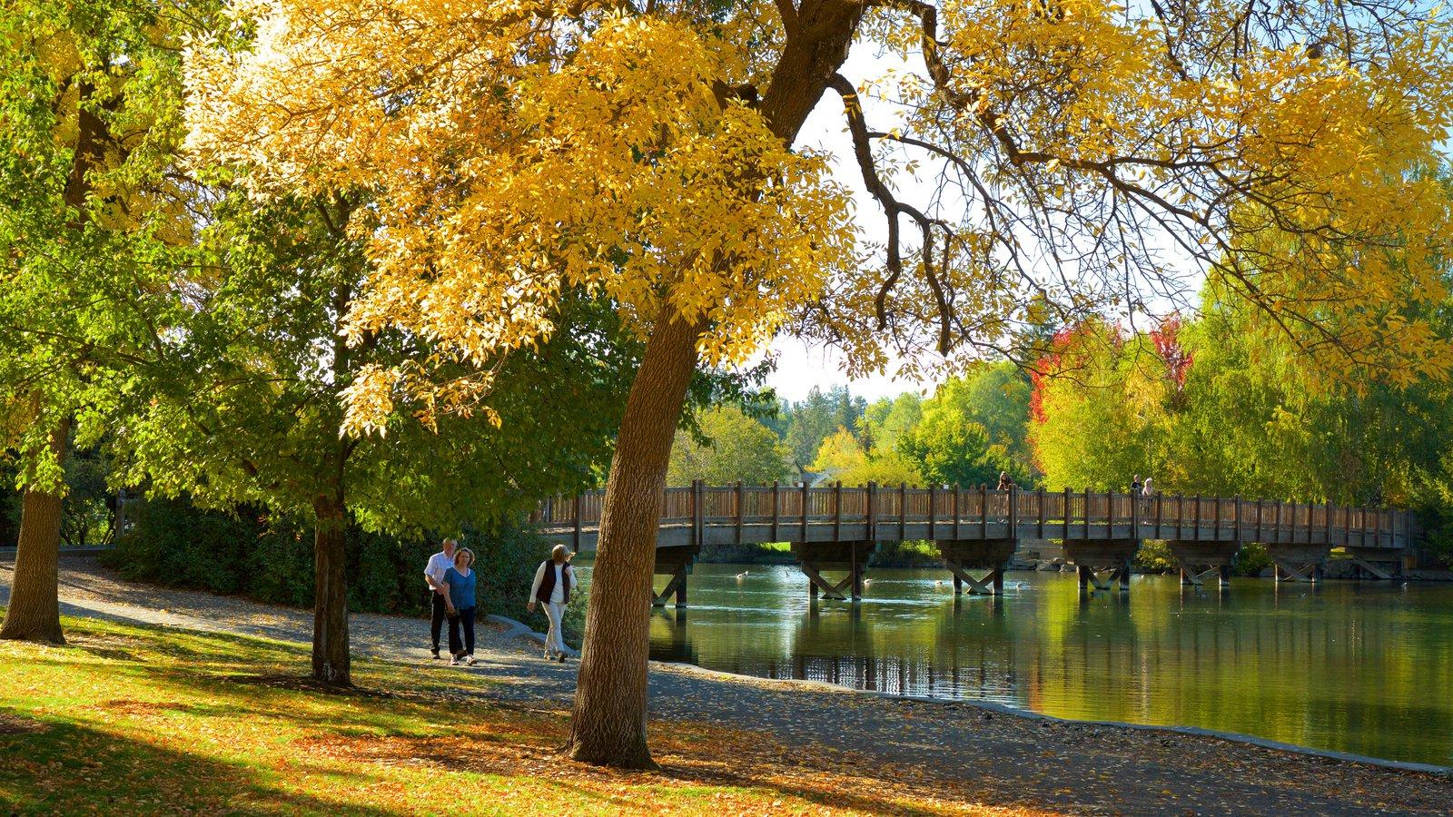 Drake Park ofreciendo un jardín, un río o arroyo y hojas de otoño