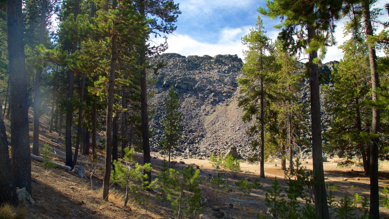 Newberry National Volcanic Monument que incluye bosques