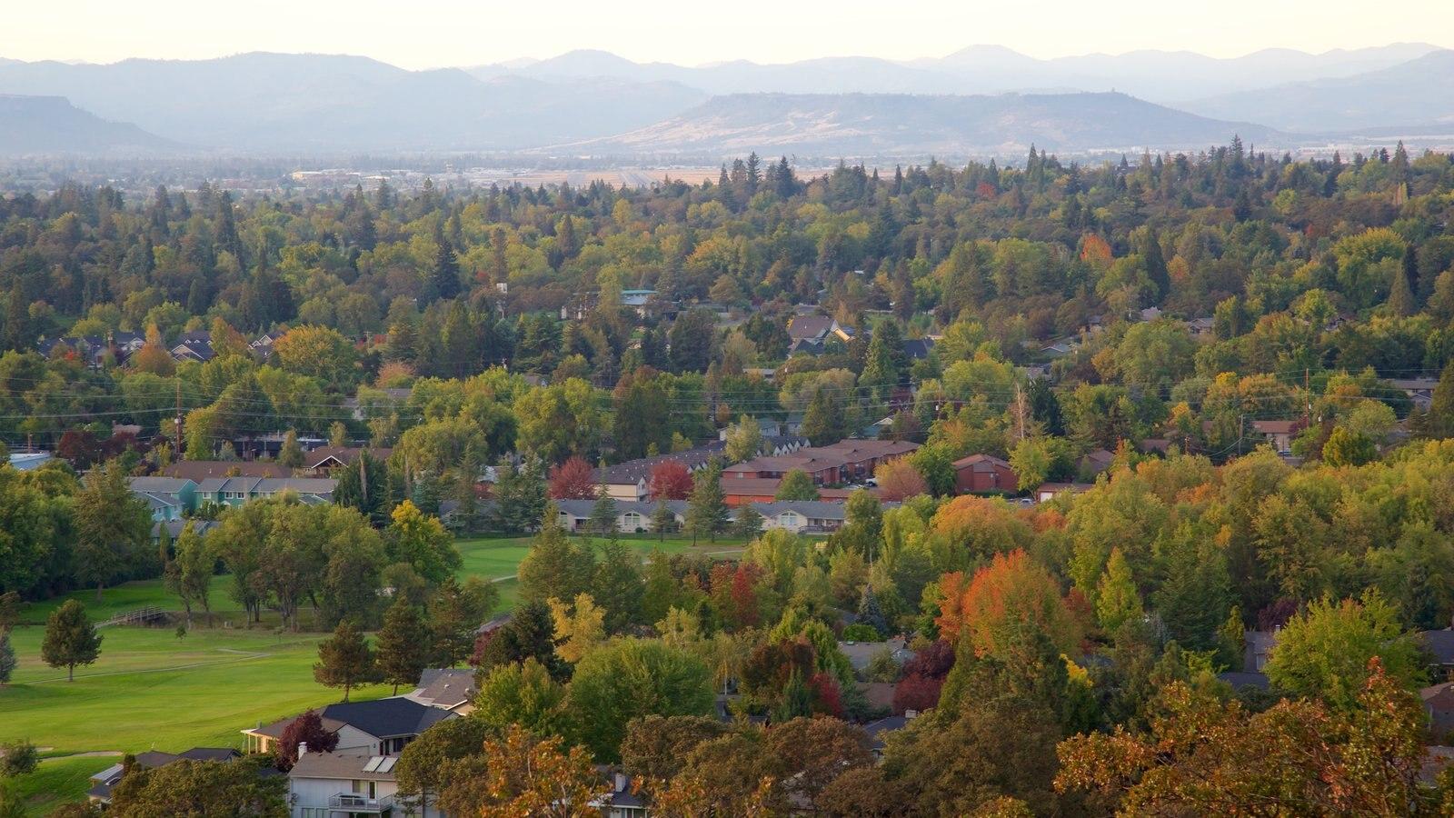 Oregón ofreciendo vistas de paisajes y los colores del otoño