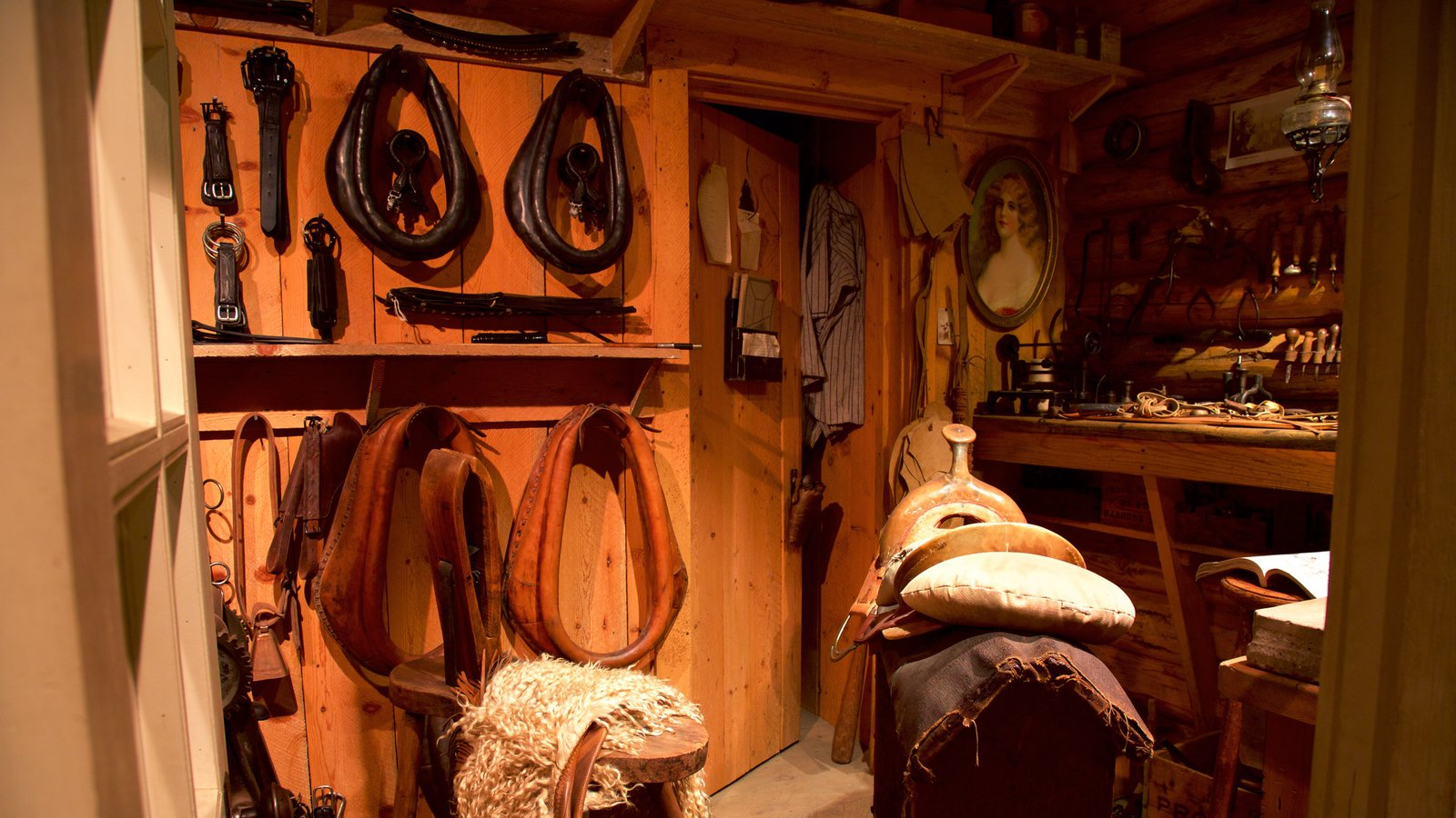 High Desert Museum mostrando vistas interiores