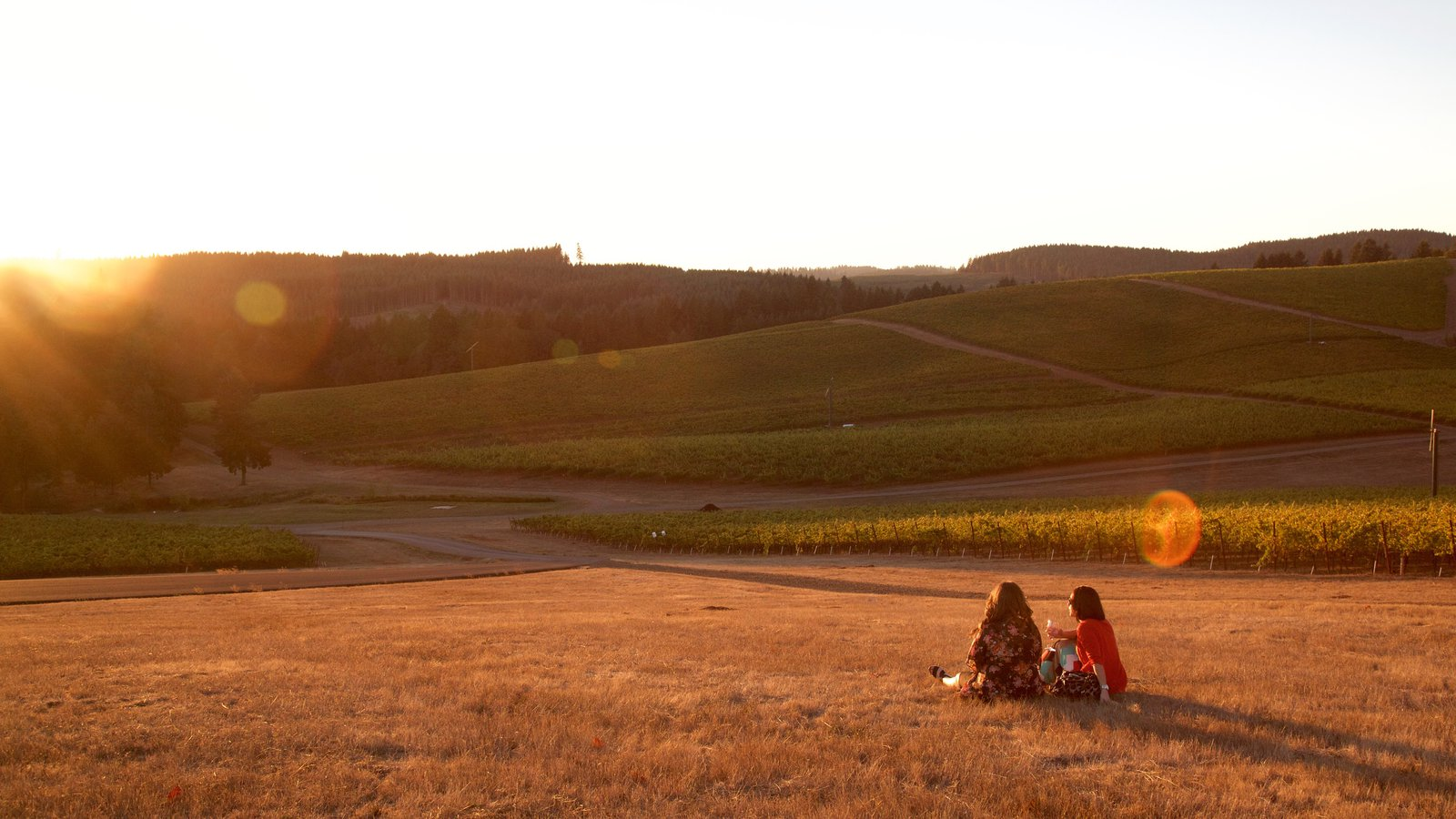 King Estate que incluye una puesta de sol y tierras de cultivo y también un pequeño grupo de personas