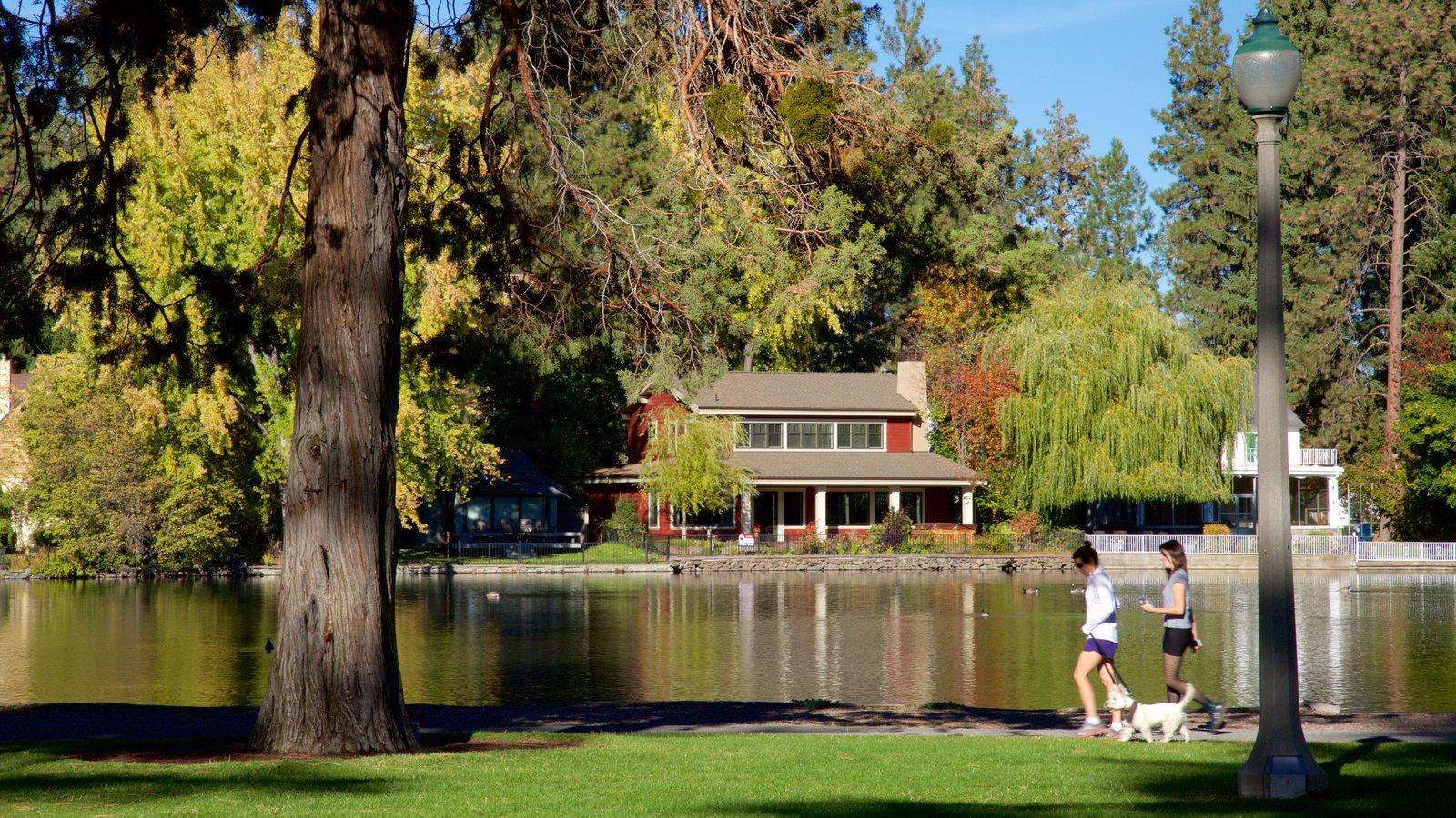 Drake Park que incluye un estanque y un parque