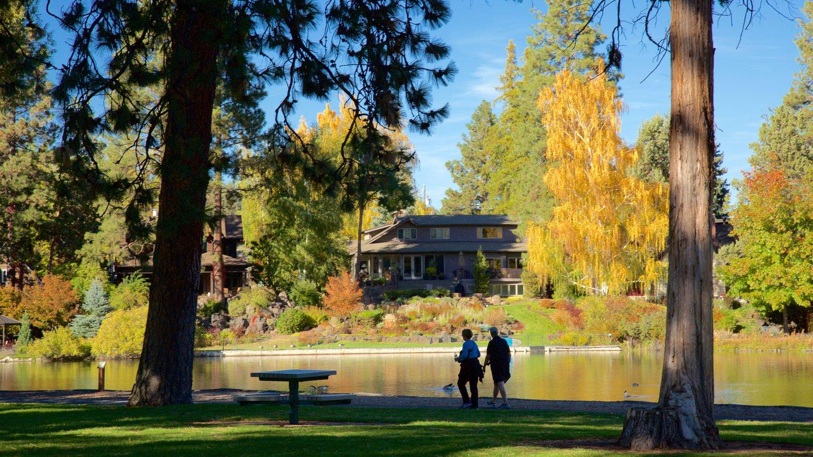Drake Park mostrando un estanque, un parque y hojas de otoño