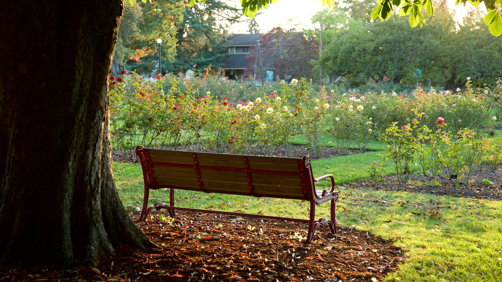 Bush House Museum ofreciendo un jardín