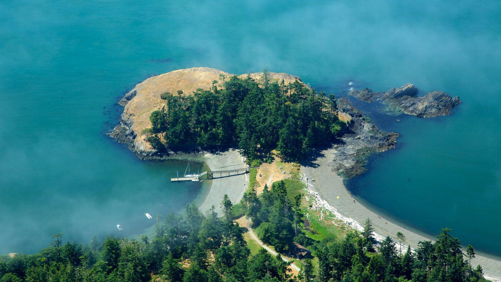 Seattle que inclui paisagens litorâneas e cenas de floresta
