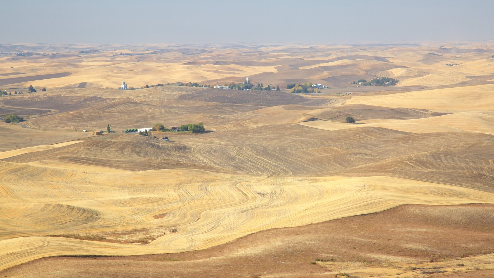 Steptoe Butte State Park which includes desert views and landscape views