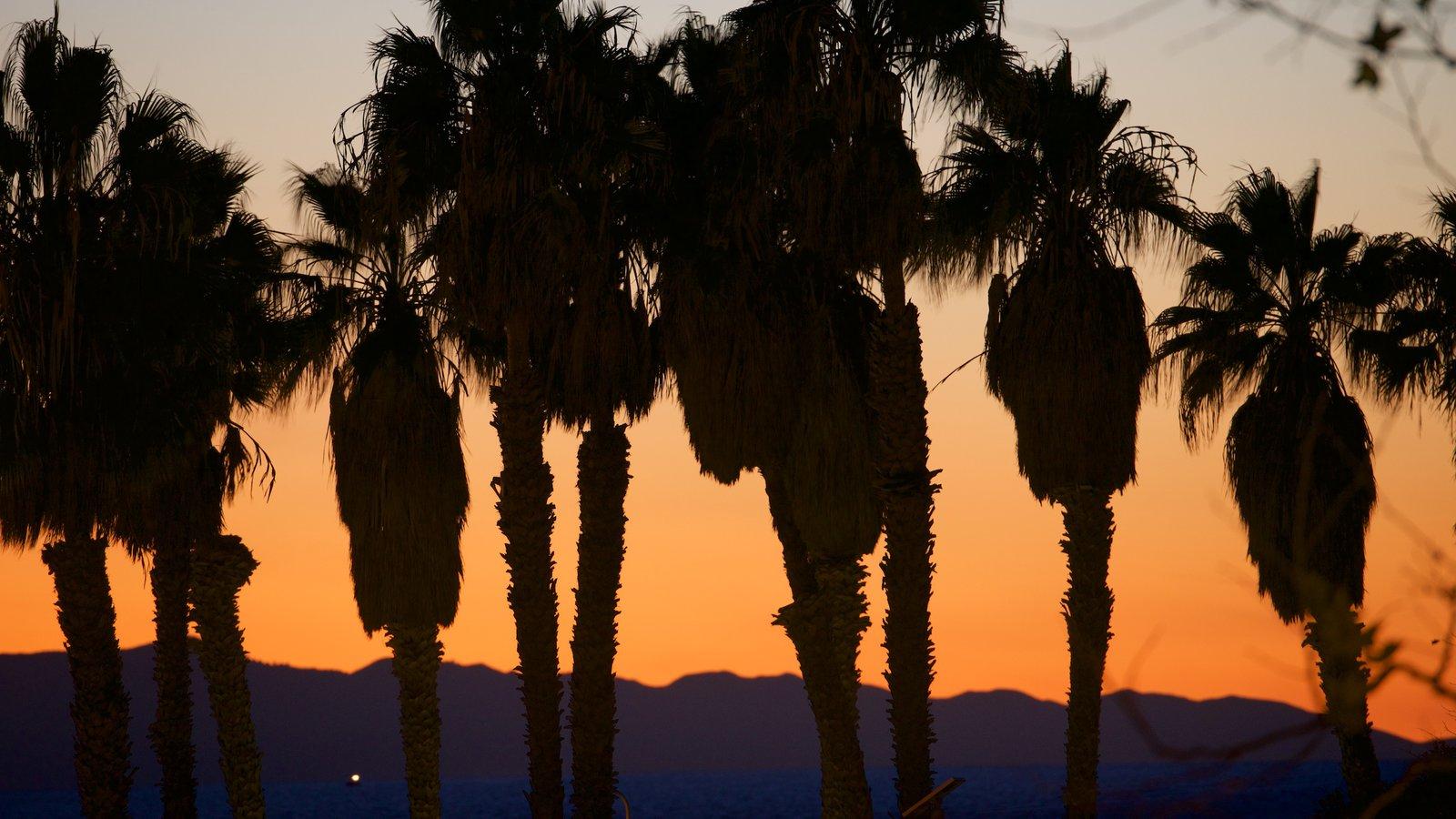 Ventura mostrando um pôr do sol