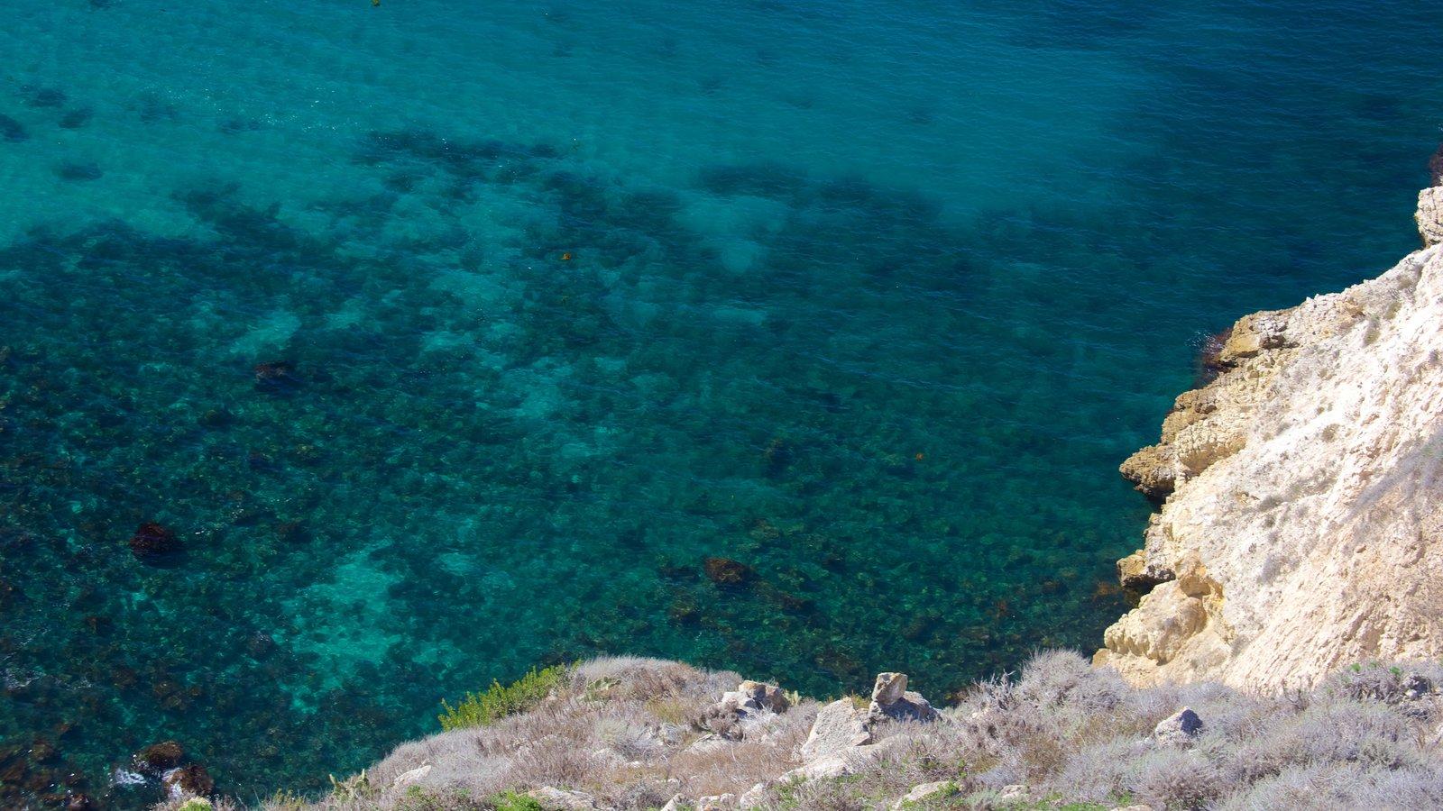 Parque Nacional de Channel Islands mostrando paisagens litorâneas e litoral acidentado