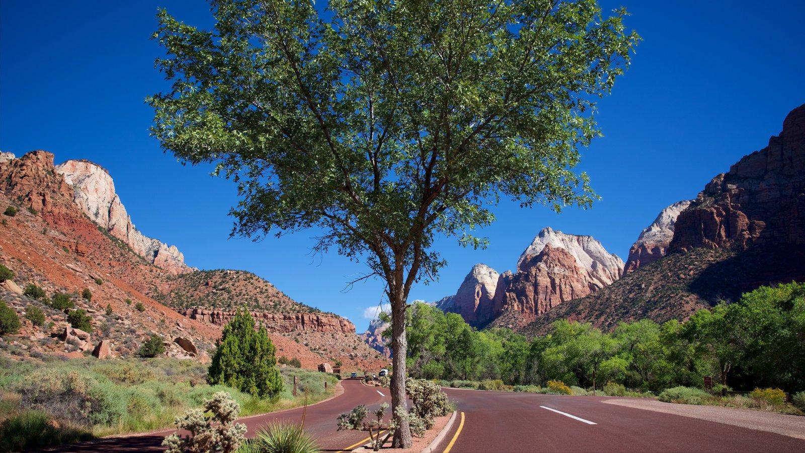 Parque Nacional Zion ofreciendo turismo y escenas tranquilas
