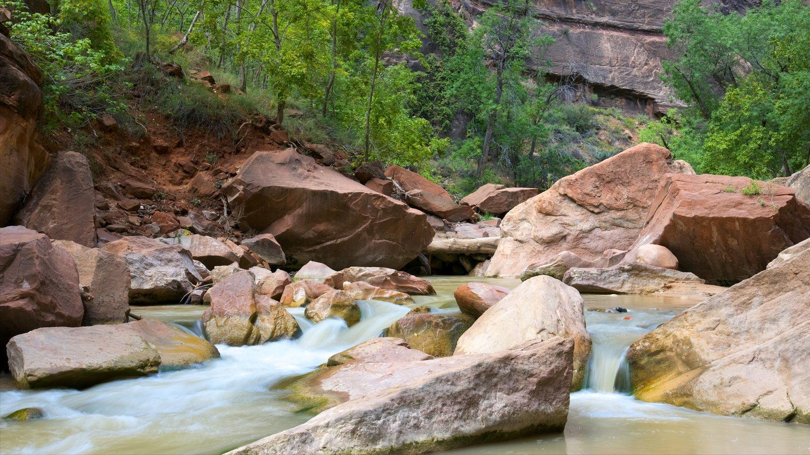 Parque Nacional Zion que incluye escenas tranquilas y un río o arroyo