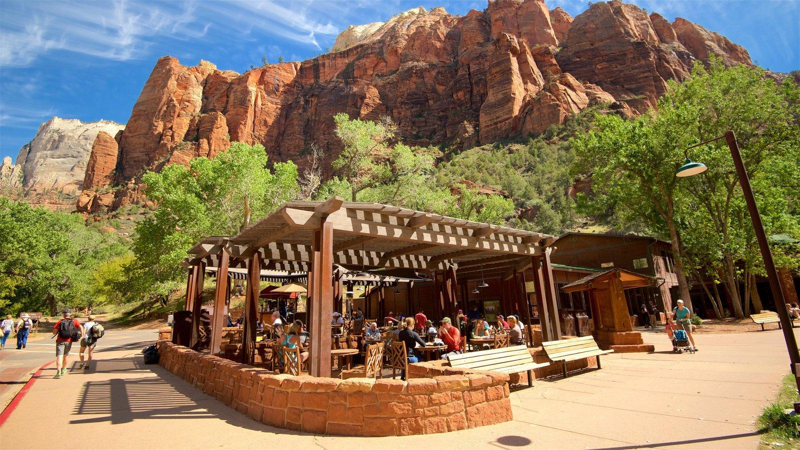 Parque Nacional Zion mostrando senderismo o caminata, escenas tranquilas y comer al aire libre