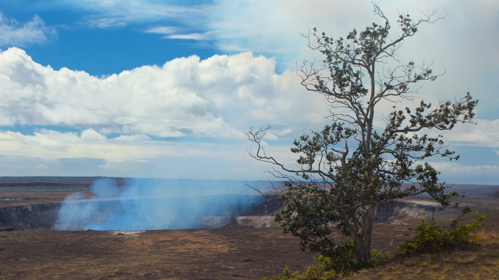 Hawaii Volcanoes National Park que inclui paisagens do deserto