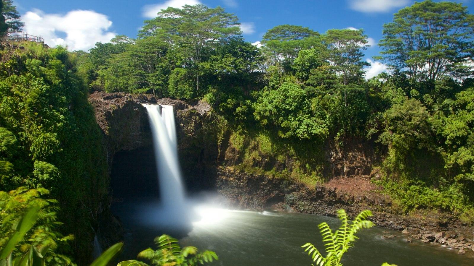 Rainbow Falls que inclui uma cachoeira e um jardim