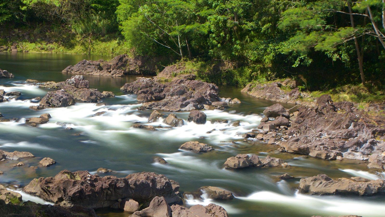 Rainbow Falls mostrando córrego e um rio ou córrego