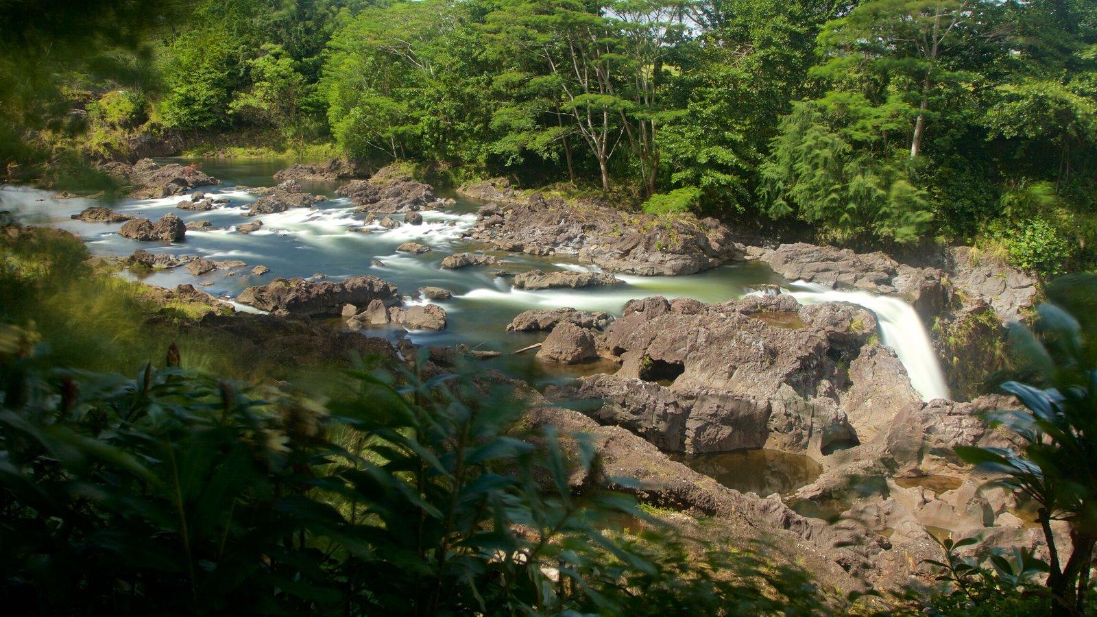 Rainbow Falls caracterizando córrego, uma cascata e um rio ou córrego