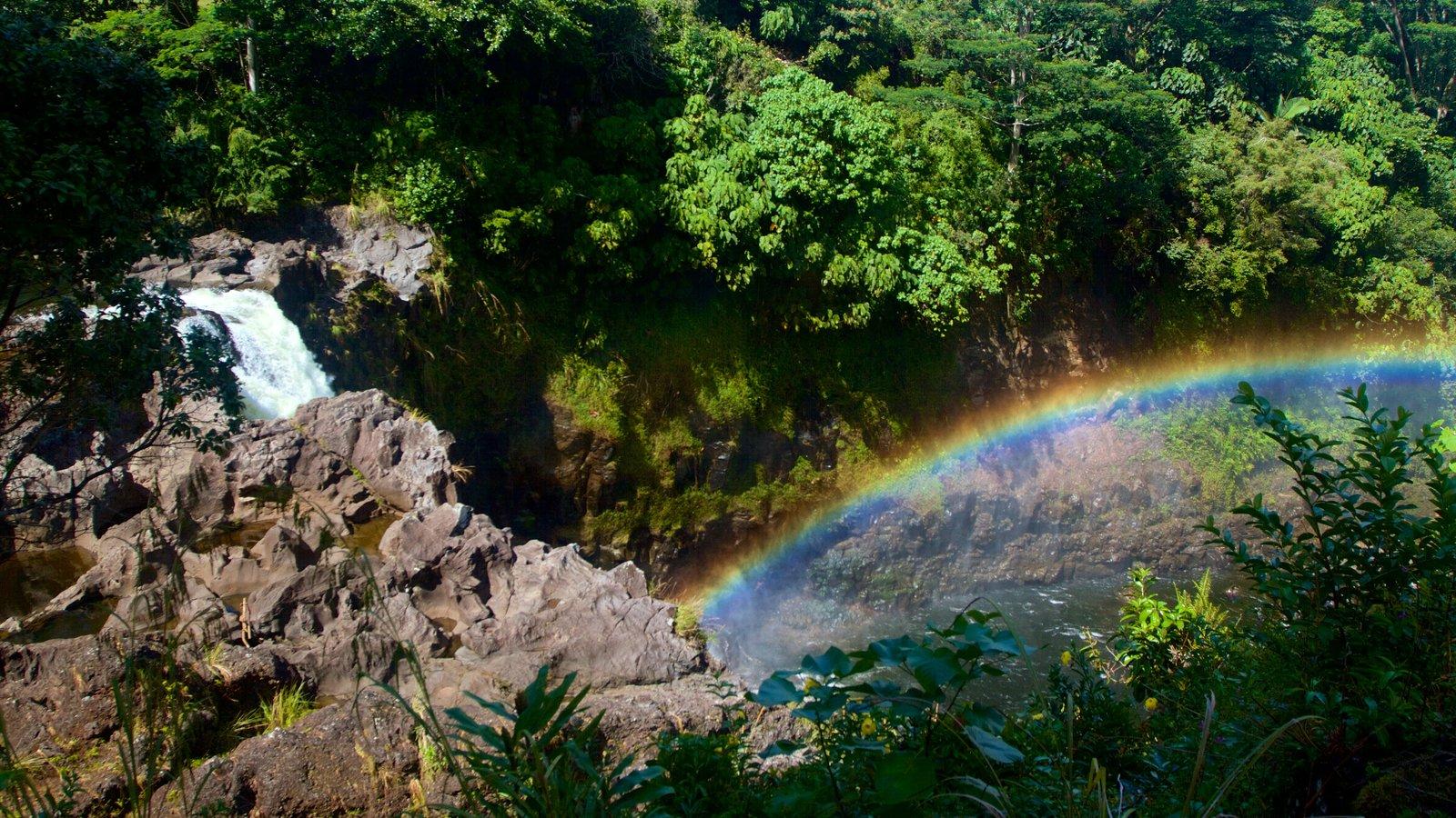 Rainbow Falls que inclui uma cascata