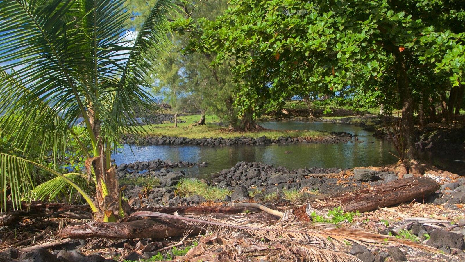 Keaukaha Beach Park mostrando uma praia de pedras
