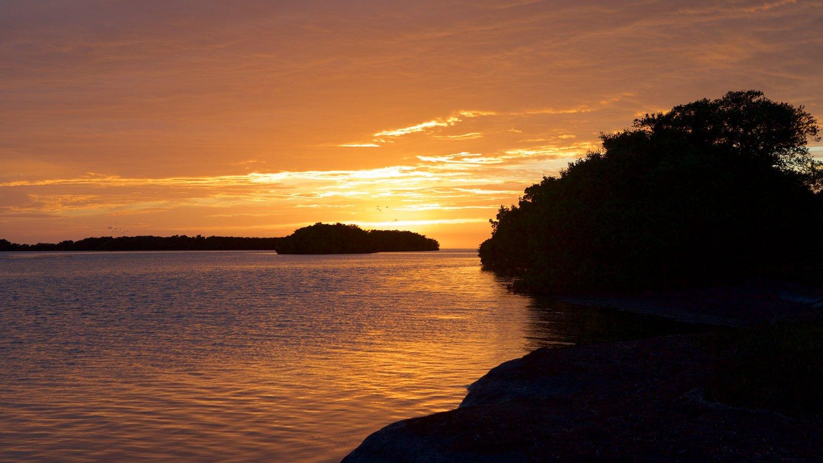 Everglades National Park que inclui cenas noturnas, paisagens litorâneas e um pôr do sol