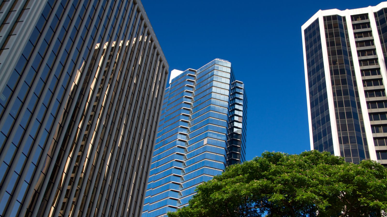 Oahu caracterizando arquitetura moderna