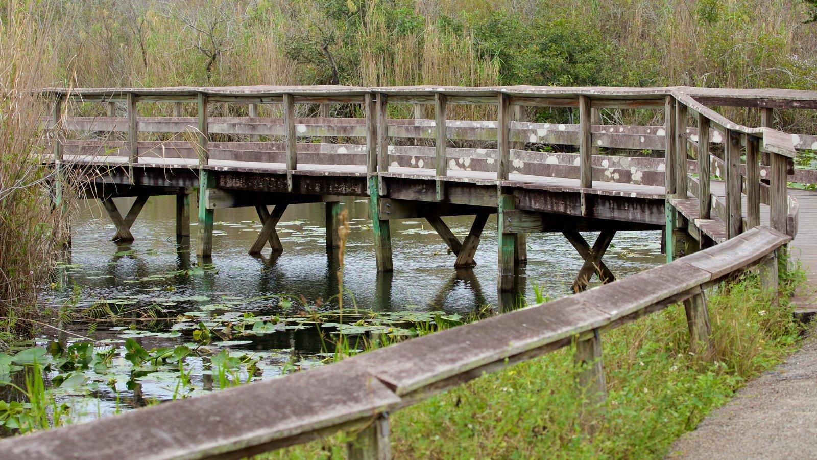 Southeast Florida showing a bridge and a lake or waterhole