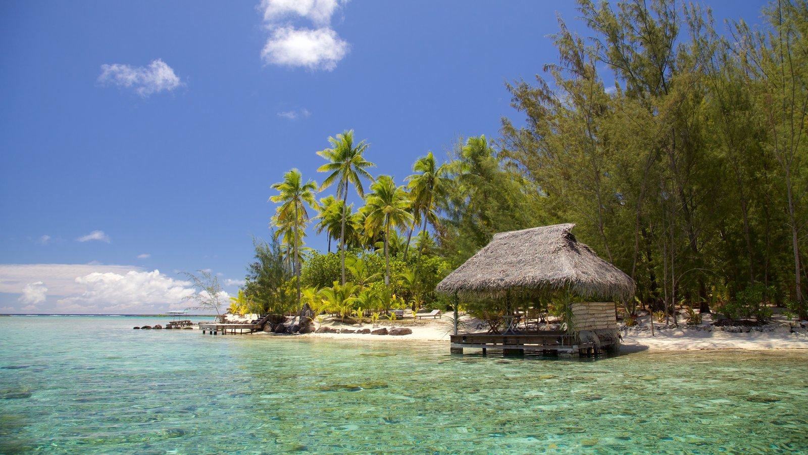 Bora Bora featuring general coastal views and tropical scenes