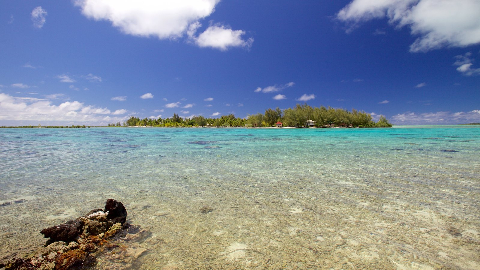 Bora Bora which includes general coastal views, landscape views and tropical scenes