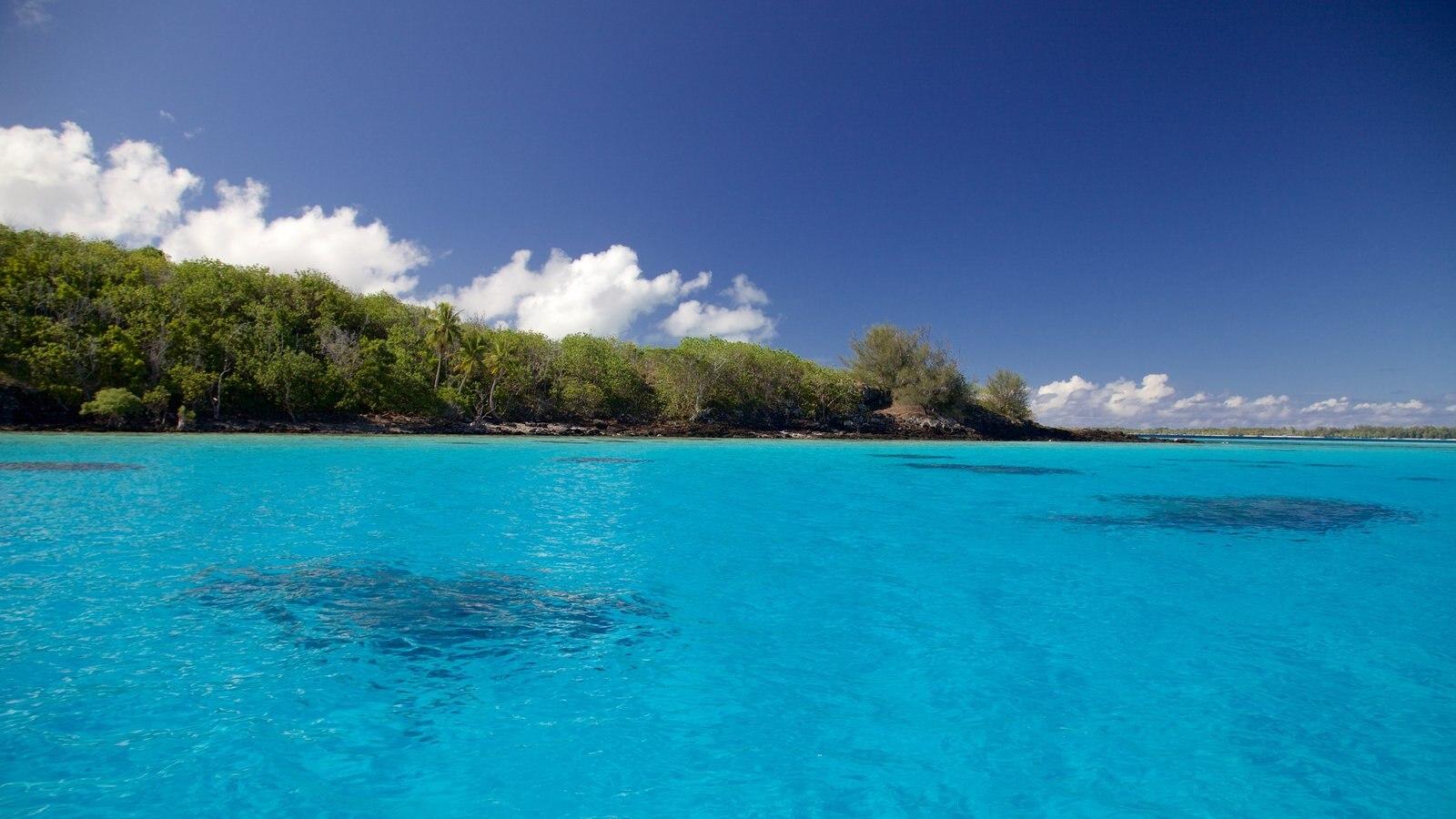 Bora Bora showing general coastal views