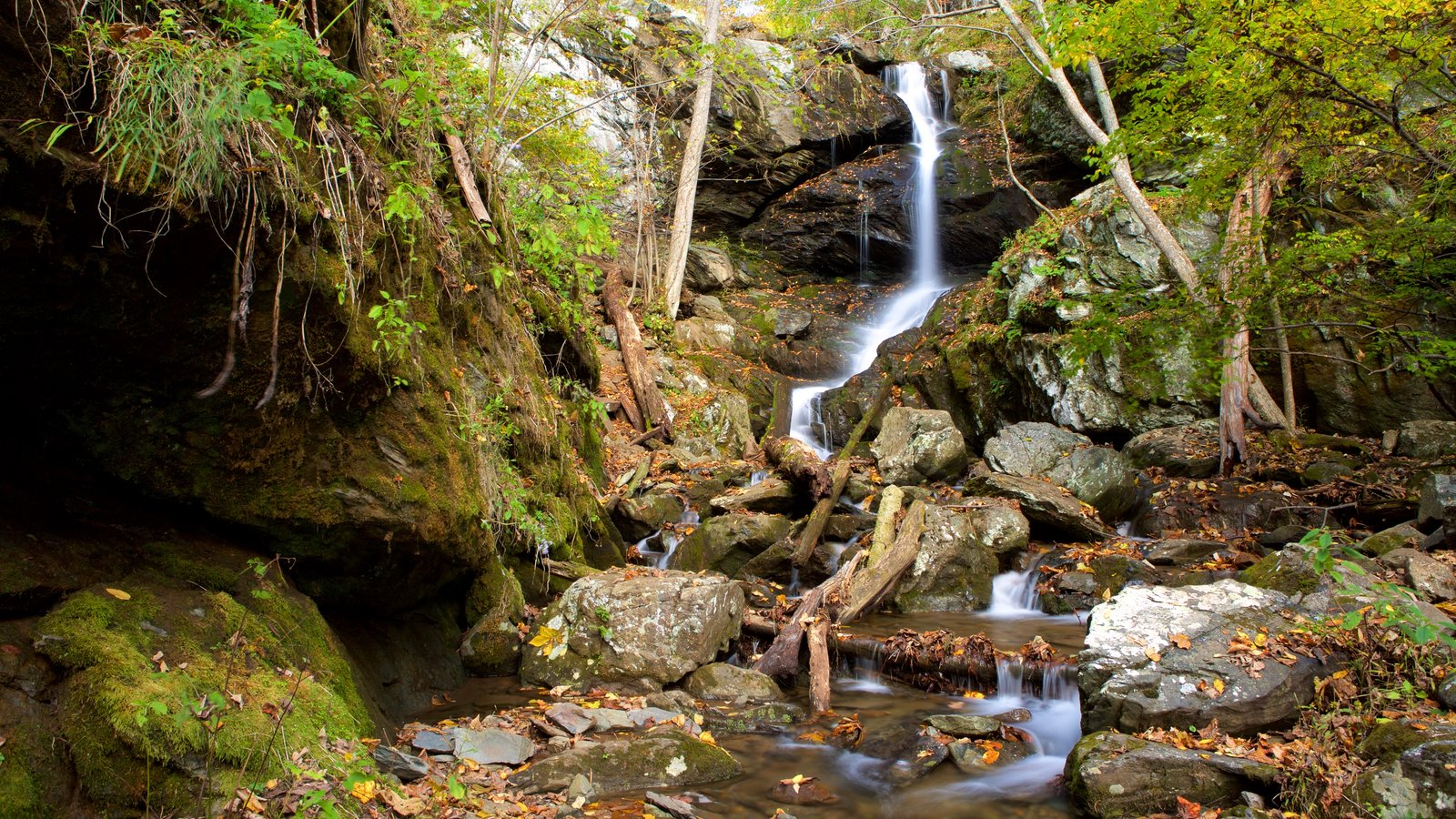 Shenandoah National Park which includes mountains, forest scenes and a cascade