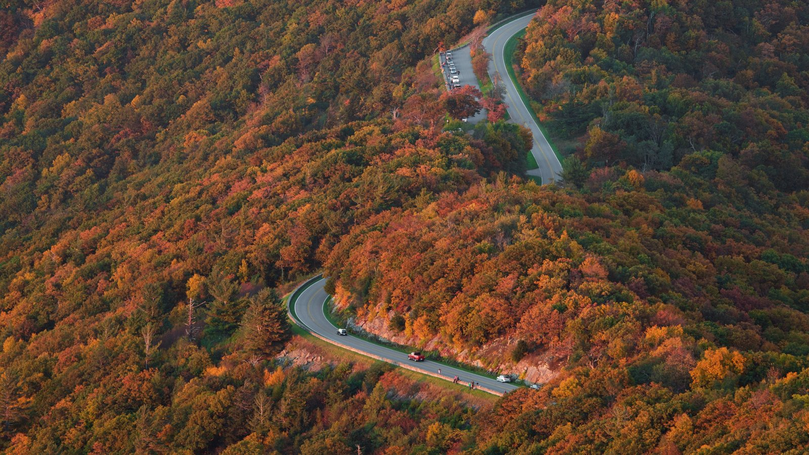 Shenandoah National Park showing fall colors, mountains and forest scenes