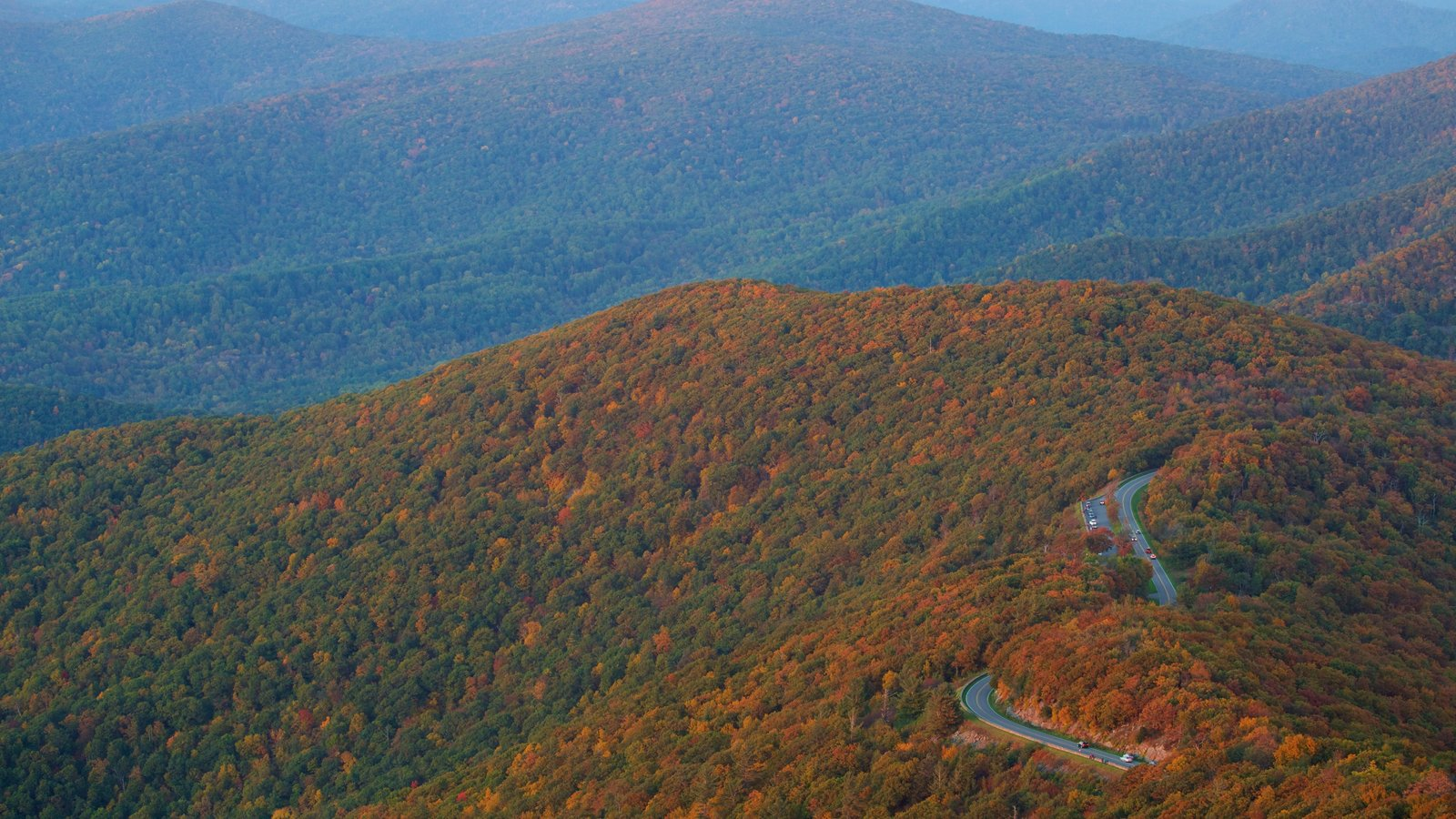 Shenandoah National Park which includes autumn leaves, mountains and forest scenes