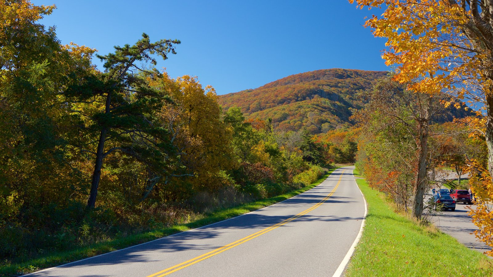 Shenandoah National Park showing autumn leaves, mountains and forests