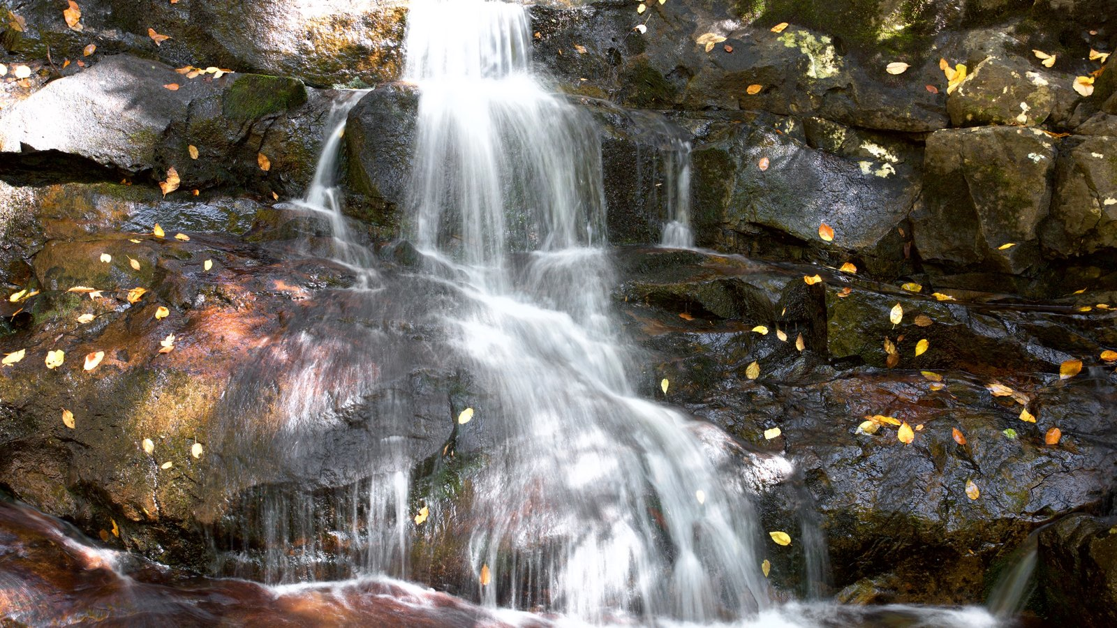Waterfall pictures view images of gatlinburg pigeon forge laurel falls featuring a cascade publicscrutiny Gallery