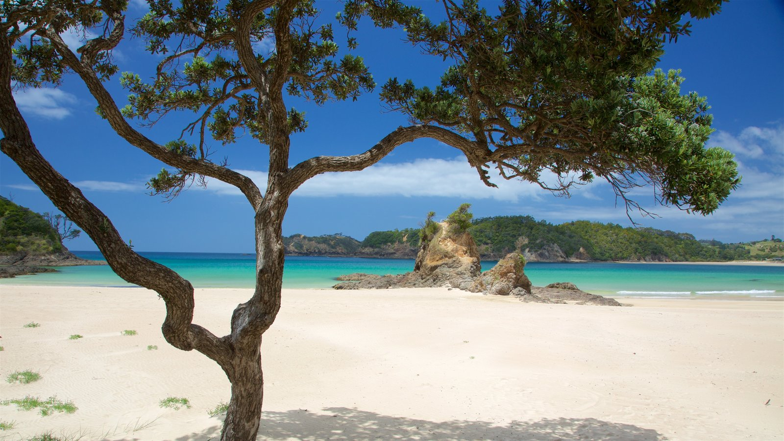 Tutukaka featuring a sandy beach, rocky coastline and a bay or harbor