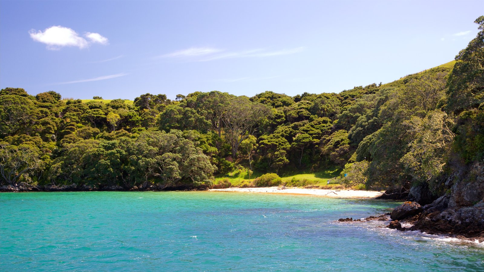 Russell which includes a bay or harbor, a sandy beach and forest scenes