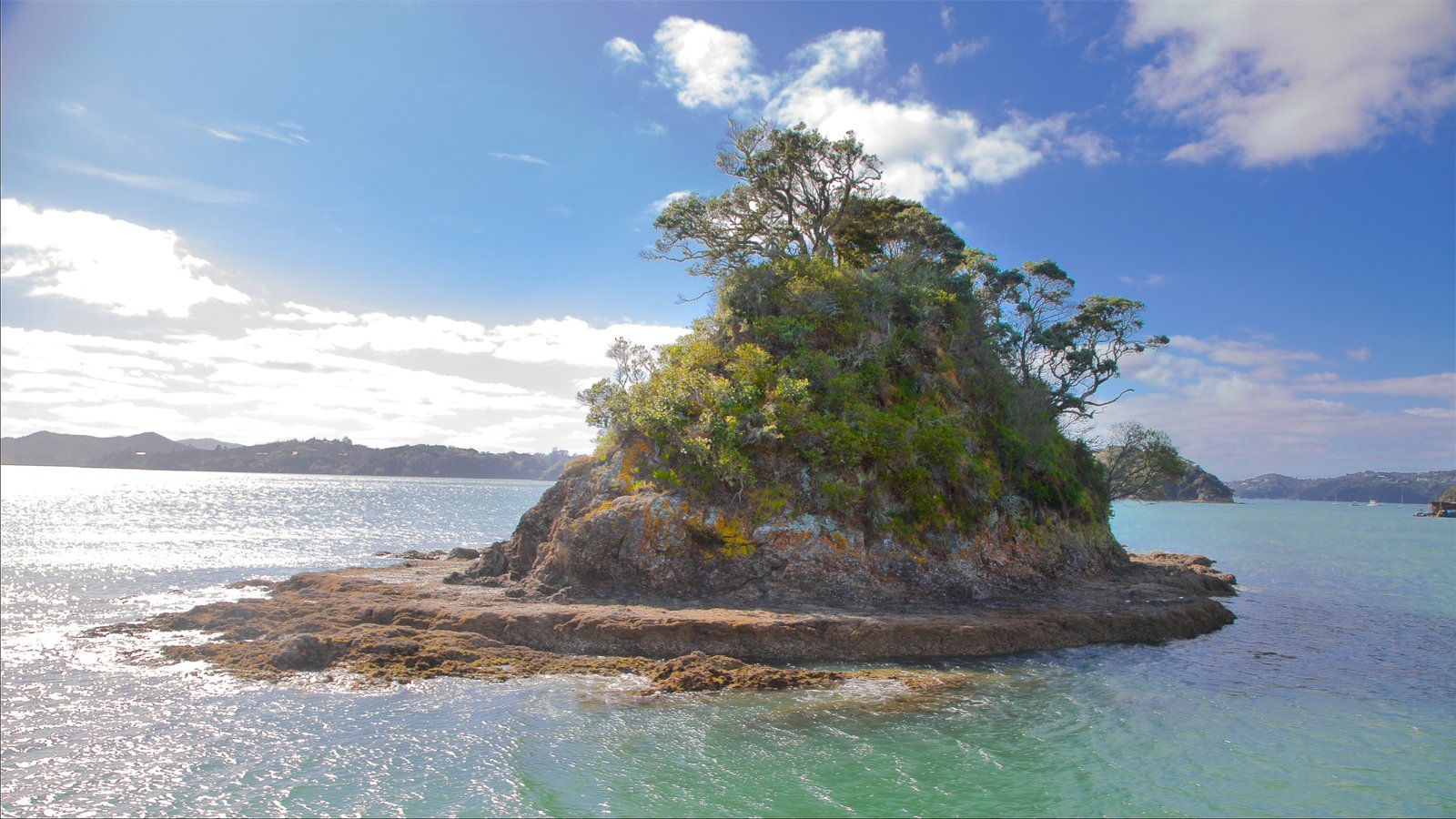 Paihia showing a bay or harbor and rocky coastline