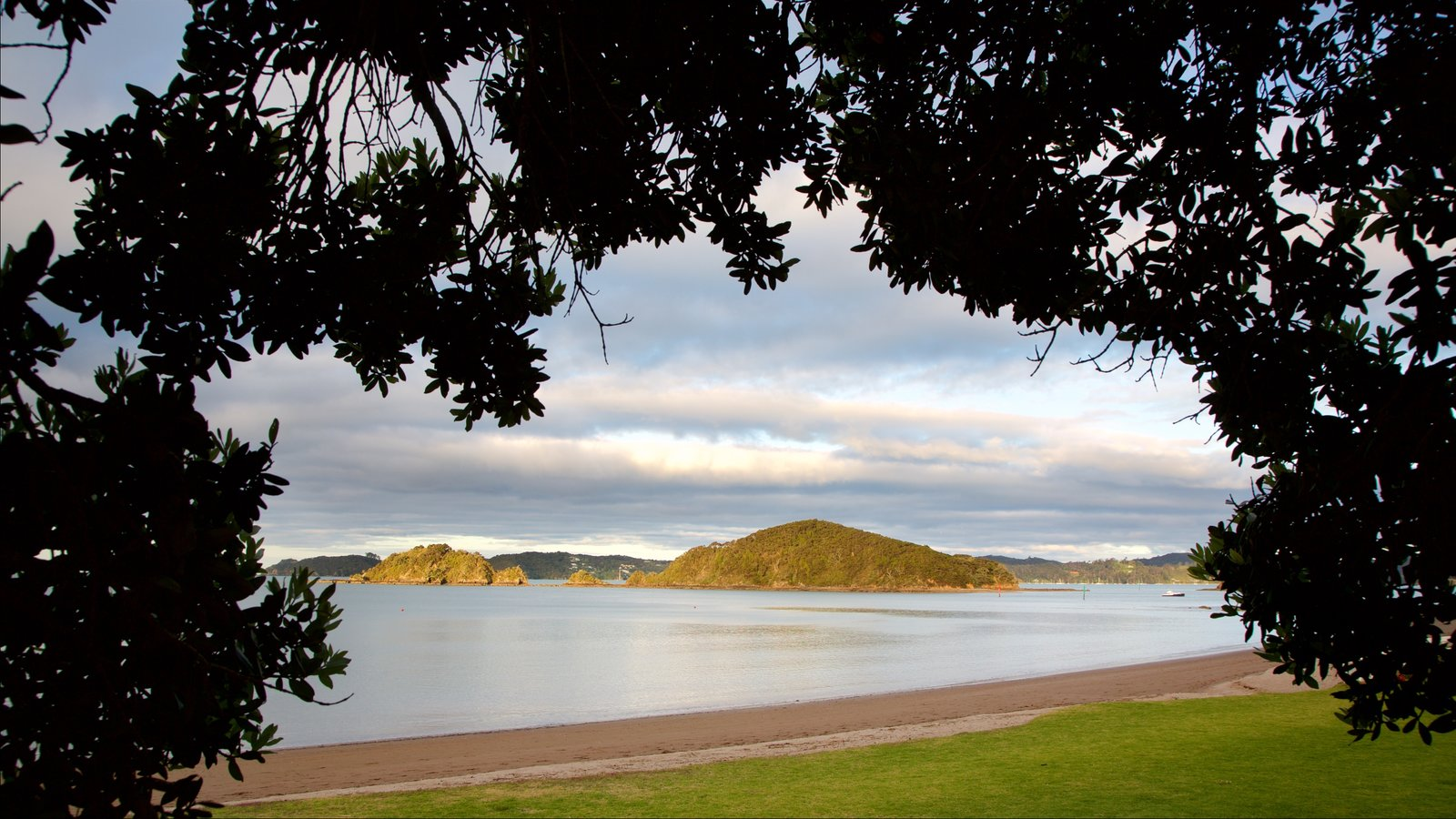 Paihia Beach featuring a sunset, a bay or harbor and a beach