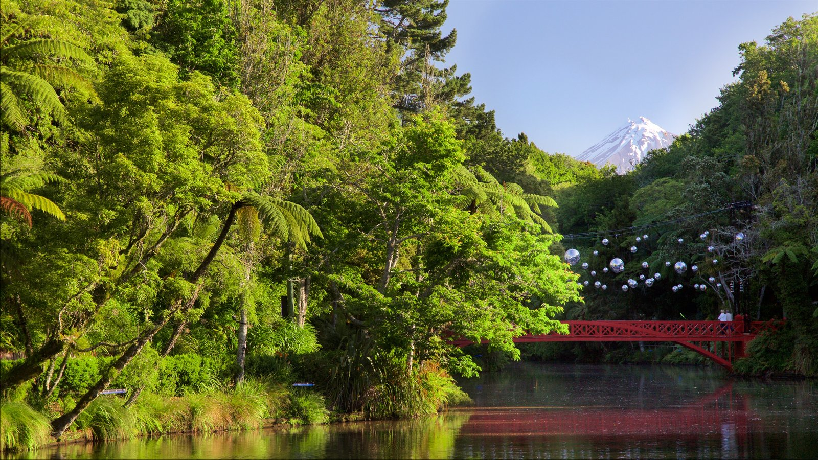 New Plymouth featuring a river or creek, forests and a bridge