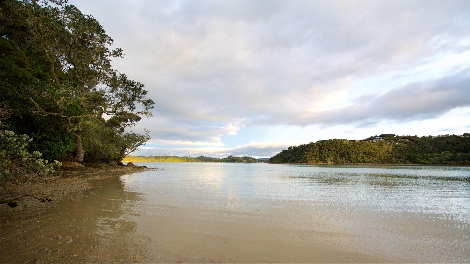 Paihia ofreciendo una bahía o puerto y vistas generales de la costa