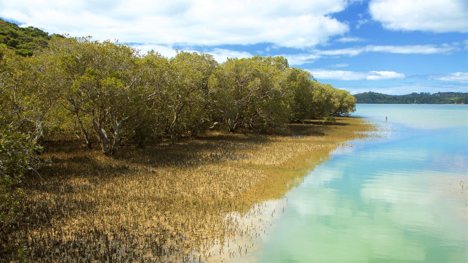 Paihia ofreciendo vistas generales de la costa, manglares y una bahía o puerto