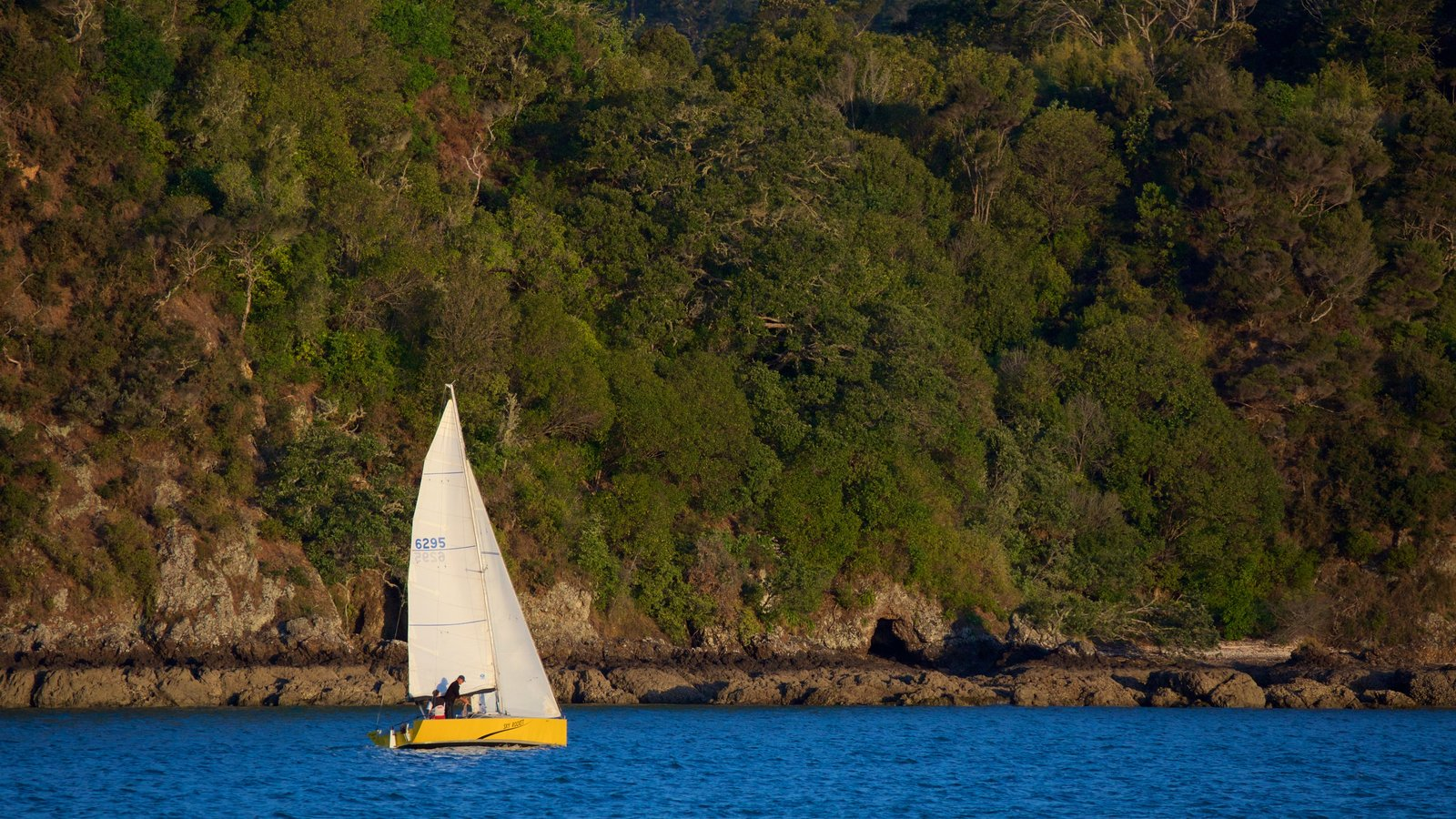 Russell featuring rocky coastline, sailing and a bay or harbor